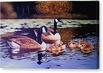 There Are Seven Ducks Out Here And They All Want Sun Chips Canvas Print by Yuki Othsuka