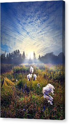 There Are Times I Fear I Lose Myself Canvas Print by Phil Koch