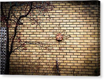 There Is Always The Sun Canvas Print by Celso Bressan