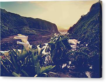 Big Sur Beach Canvas Print - There Is Harmony by Laurie Search