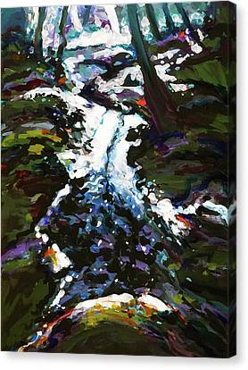 There Will Always Be The Creek, Moonlight And Bad Wine Canvas Print