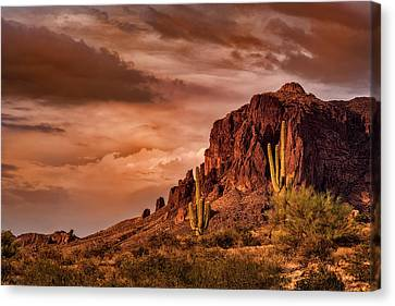 Canvas Print featuring the photograph There's Gold In Them Hills  by Saija Lehtonen