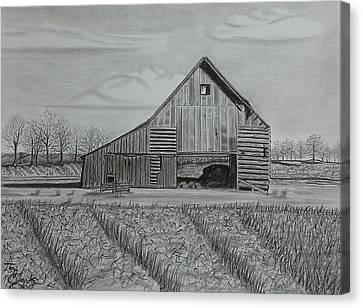 Theresa's Barn Canvas Print by Tony Clark