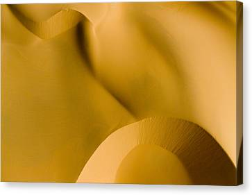 These Luscious Dunes Are Located Canvas Print by Michael Fay
