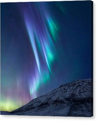 Curtains Canvas Print - These Small Hours by Tor-Ivar Naess