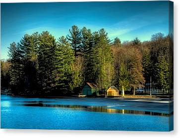 Thin Ice Forming At The Pond Canvas Print by David Patterson