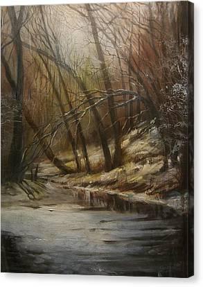 Thin Ice Canvas Print by Tom Shropshire