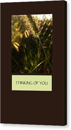 Thinking Of You Canvas Print by Mary Ellen Frazee
