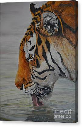 Thirsty Canvas Print by Charlotte Yealey
