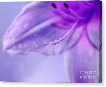Thirsty For Life Canvas Print