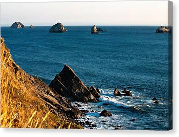 This Is Oregon State 1 - The Oregon Coast Canvas Print by Paul W Sharpe Aka Wizard of Wonders