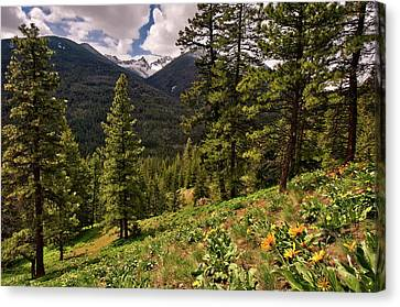 This Is Washington State No.1 - Klipchuck Canvas Print by Paul W Sharpe Aka Wizard of Wonders