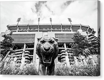 Canvas Print - This Is Where The Tigers Play - Bw by Scott Pellegrin