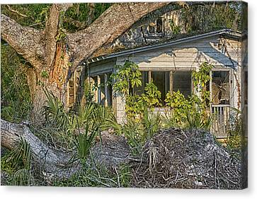 Us1 Canvas Print - This Old House by Louise Hill