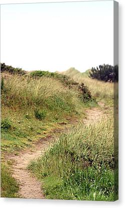 This Way To The Beach Canvas Print by Joseph Skompski