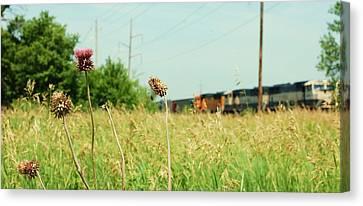 Thistle Rail Canvas Print