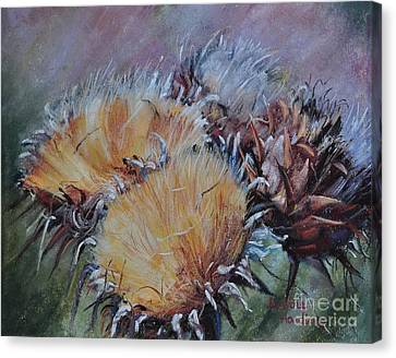 Thistledown Canvas Print by Debbie Harding
