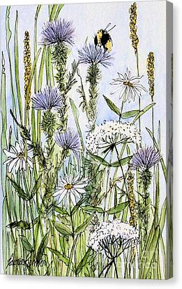 Thistles Daisies And Wildflowers Canvas Print by Laurie Rohner