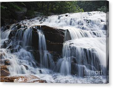 Thoreau Falls - White Mountains New Hampshire Usa Canvas Print by Erin Paul Donovan