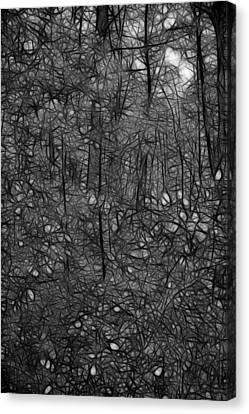 Thoreau Woods Black And White Canvas Print by Lawrence Christopher