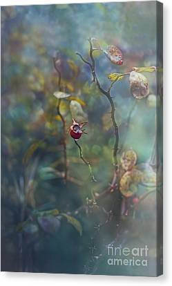 Thorns And Roses Canvas Print