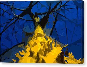 Thorny Tree Blue Sky Canvas Print by David Lee Thompson