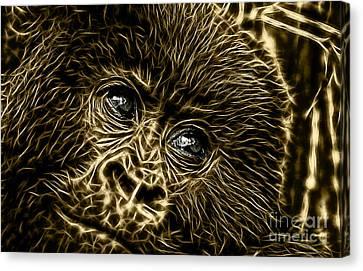 Ape Canvas Print - Those Eyes by Marvin Blaine