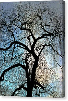 Canvas Print - Those Gnarled Branches by Guy Ricketts