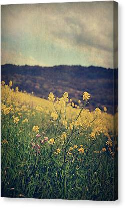 Those Lighthearted Days Canvas Print by Laurie Search