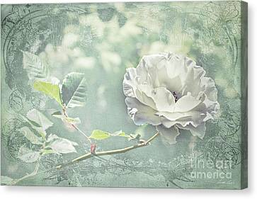 Canvas Print featuring the photograph Thoughts Of You by Linda Lees