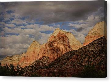 Threatened Canvas Print by Jim Cook