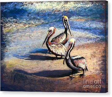 Three Amigos Canvas Print by Shirley Leswick
