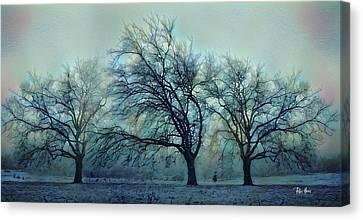 Bare Trees Canvas Print - Three Bare Trees by Russ Harris
