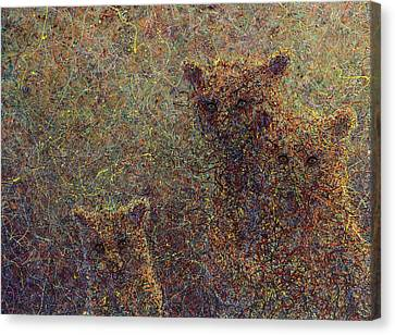 Three Bears Canvas Print by James W Johnson