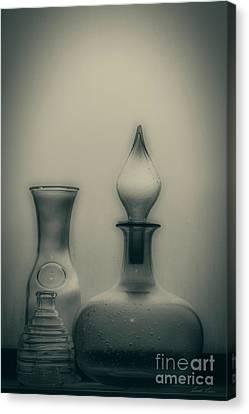 Three Bottles Canvas Print by Linda Lees