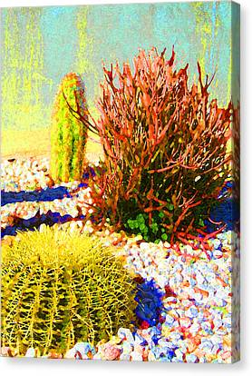 Three Cacti Canvas Print by Amy Vangsgard