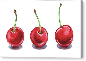 Canvas Print featuring the painting Three Cherries Watercolor Painting by Irina Sztukowski