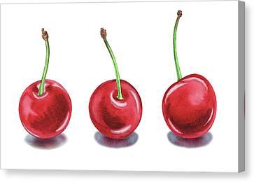 Canvas Print featuring the painting Three Cherries Watercolor Painting by Irina Sztukowski