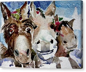 Three Christmas Donkeys Canvas Print by Mindy Newman