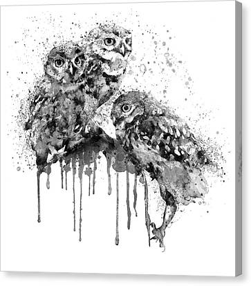 Modern Digital Art Canvas Print - Three Cute Owls Black And White by Marian Voicu