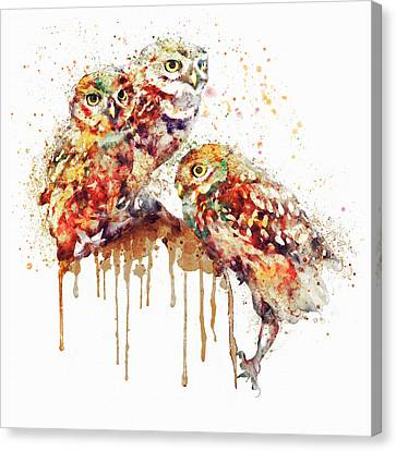 Three Cute Owls Watercolor Canvas Print by Marian Voicu