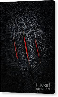 Three Cuts Canvas Print by Carlos Caetano
