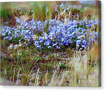 Three Dollar Bridge Flowers Canvas Print by Diane E Berry