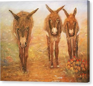 Three Donkeys Canvas Print by Loretta Luglio