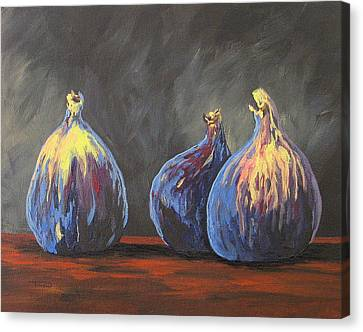 Three Figs Canvas Print