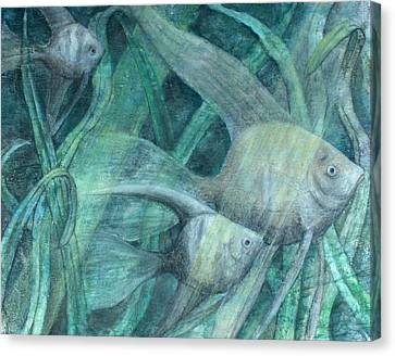 Three Fish Canvas Print by Sandy Clift
