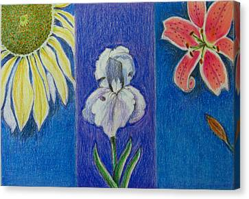 Canvas Print featuring the drawing Three Flowers by Patricia Januszkiewicz
