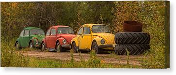 Three For The Road Canvas Print