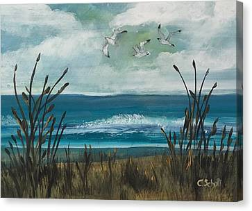 Three Gulls Canvas Print
