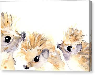 Three Hedgehogs Canvas Print